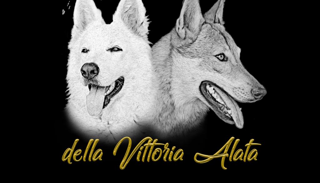 Logo della vittoria alata