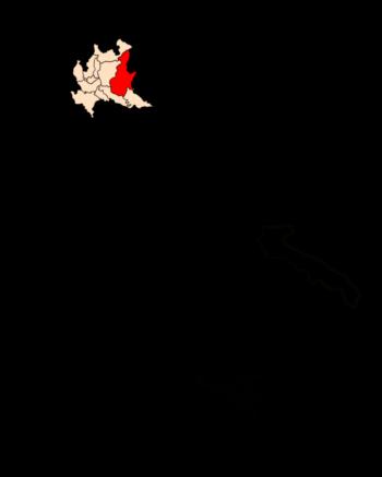 brescia-lombardia-allevamento-cane-lupo-cecoslovacco-pastore-svizzero-bianco-cuccioli